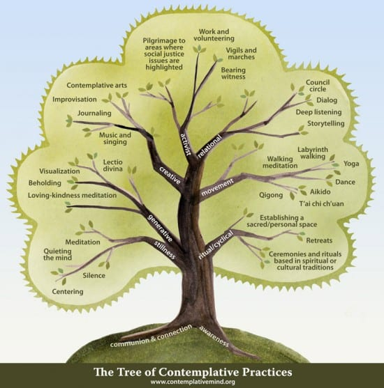 The Tree of Contemplative Practice