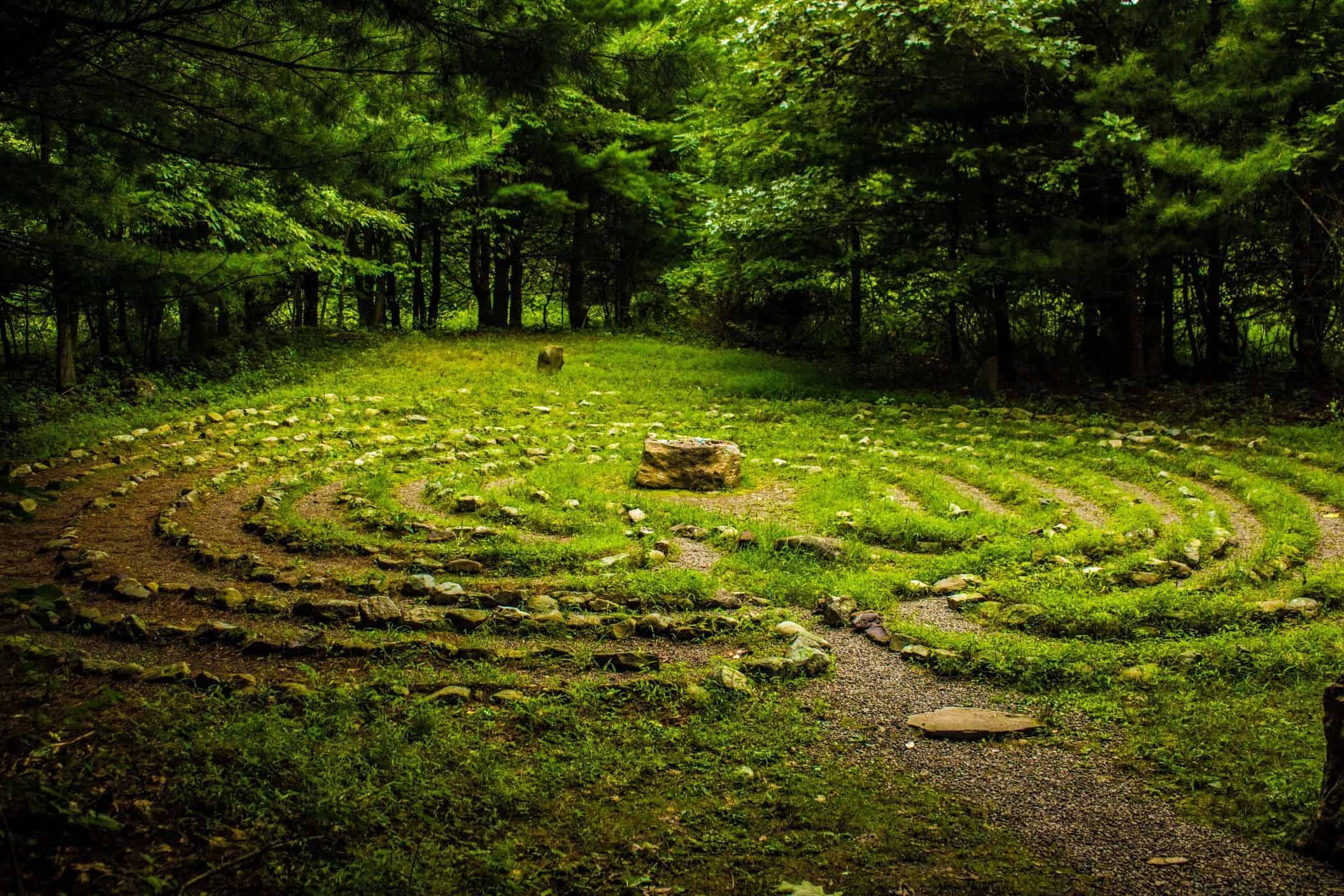 labyrinth set in a beautiful green and lush forest