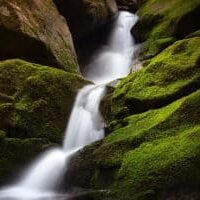 long exposure photo of water flowing down a mossy green waterfall